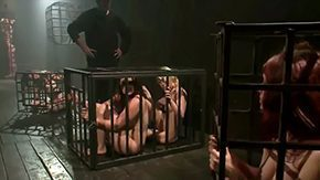 Cage, 4some, Banging, Bend Over, Big Ass, Big Cock