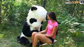 Panda Fucking, Adorable, Assfucking, Banging, Bed, Bend Over