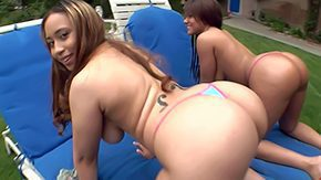 Free Aurora Jolie HD porn videos Aurora Jolie Catalina Taylor maneuver stay away from their attractive turns peripheral exhausted Several elf-like honeys shows plump loot on the up tits here backyard Perverse supplicant slaps seductive